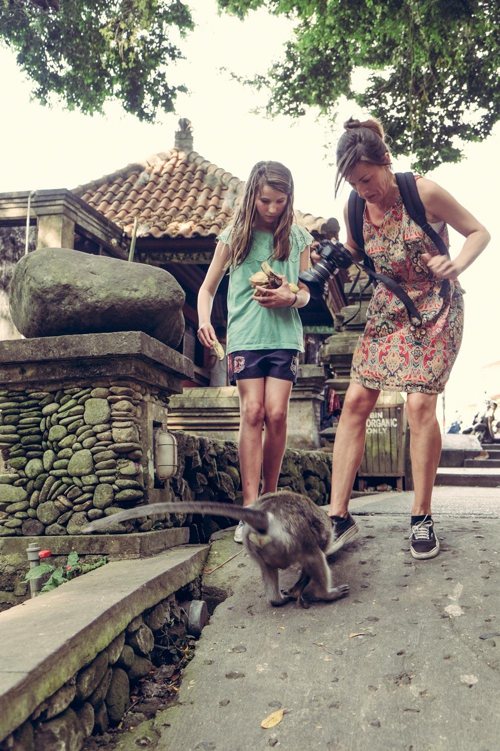 Bali. Świątynia małp w Ubud