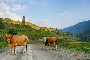 treking w Czeczenii, Itum Kale