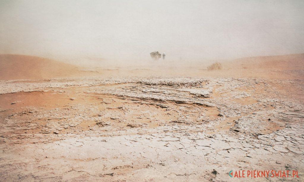 Fotoobraz z wystawy Sen o Saharze