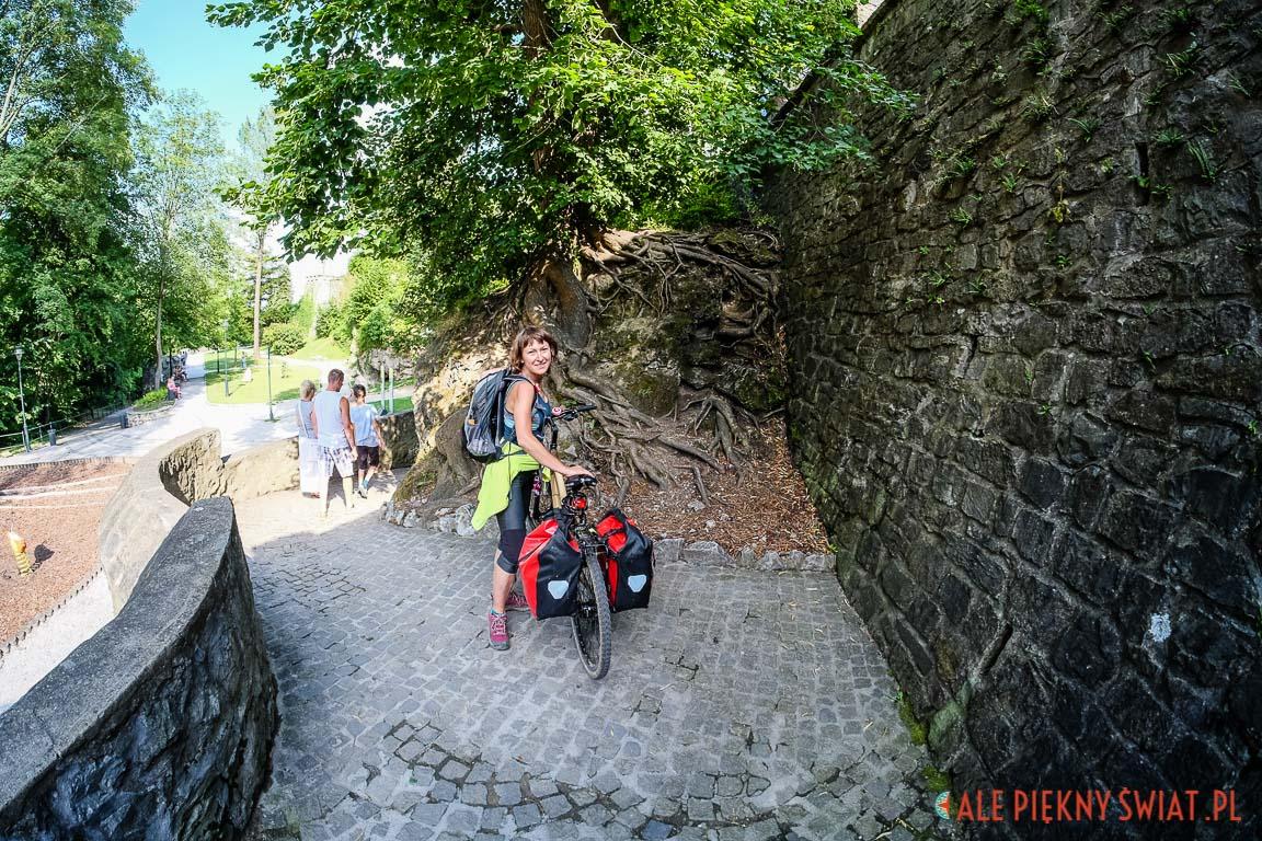 Węgry na bambusowych rowerach