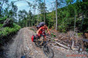 Węgry na bambusowych rowerach - przejazd przez góry bukowe