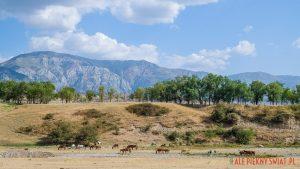 U podnóży Ałtaju w Kazachstanie