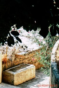 Starożytny sarkofag w roli donicy w Byblos w Libanie
