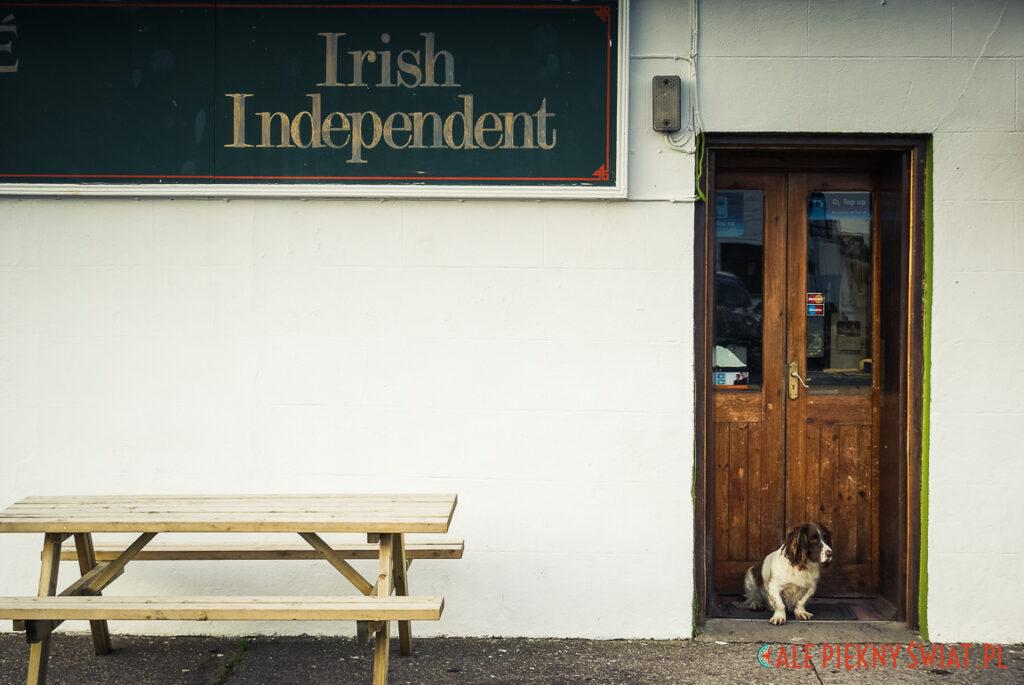 Obrazek z Irlandii